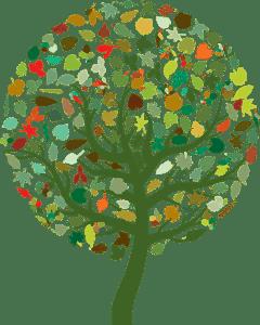 Síť Enviromentálních informačních a poradenských center v Pardubickém kraji
