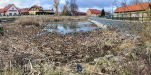 Chrudim: revitalizace rybníka dnes začala