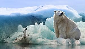 Vědci Masarykovy univerzity se po 3 měsících vrátili z Antarktidy
