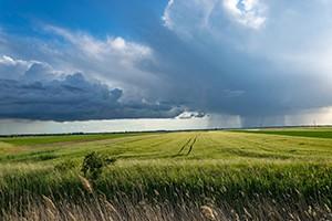 SZIF v rámci podpory ekologické zemědělství rozdělí více než 1,4 miliardy korun