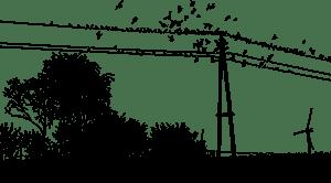 Ve Žďáru n. S. energetici obsazují na dráty spirály chránící ptáky