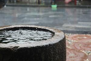 Zlínská zoo zachytí v retenčních nádržích 200 kubíků dešťové vody