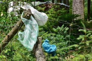 Ochranáři vyzvali lidi k úklidu přírody při procházkách
