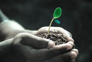 Návrh protierozní vyhlášky jde do finále, ekologové tvrdí: je mírný a neřeší prevenci