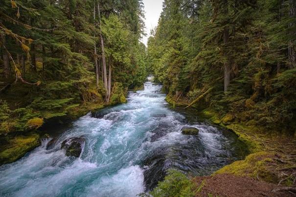 Výzkum: u vyústění vod z dolů do řek je větší znečištění anorganickými solemi