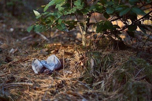 Do kampaně proti odpadkům se zapojí všechny národní parky v České republice