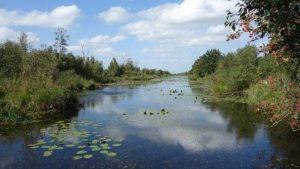 Zlínský kraj přispěje přes 729 000 korun na údržbu zvláště chráněných území