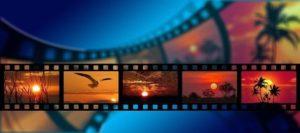 Uspět na festivalu Ekofilm chce přes 200 dokumentů o životním prostředí