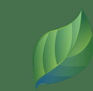 Češi mají podle prodejců stále větší zájem o ekologické produkty