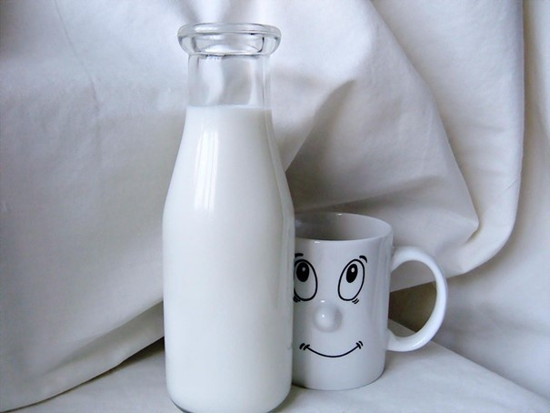 Mléko označené A2 od normandských krav je určené pro lidi alergické na kasein