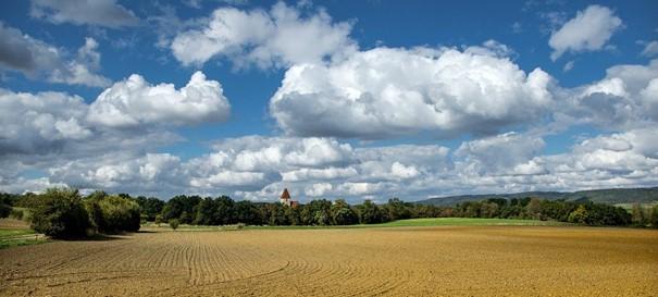 V Česku je boj o zemědělskou půdu, cena stoupá, informovala univerzita