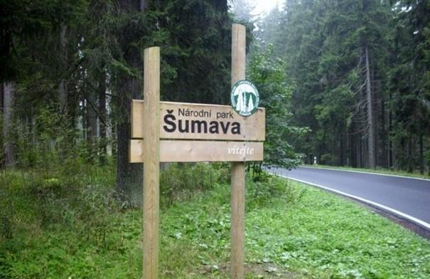 Šumavský park obnovil díky EU 13 mokřadů a rašelinišť ze 47 plánovaných